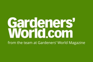 GW Mag logo