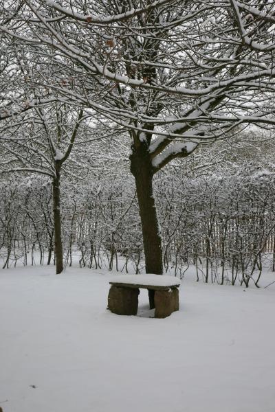 December snow bench
